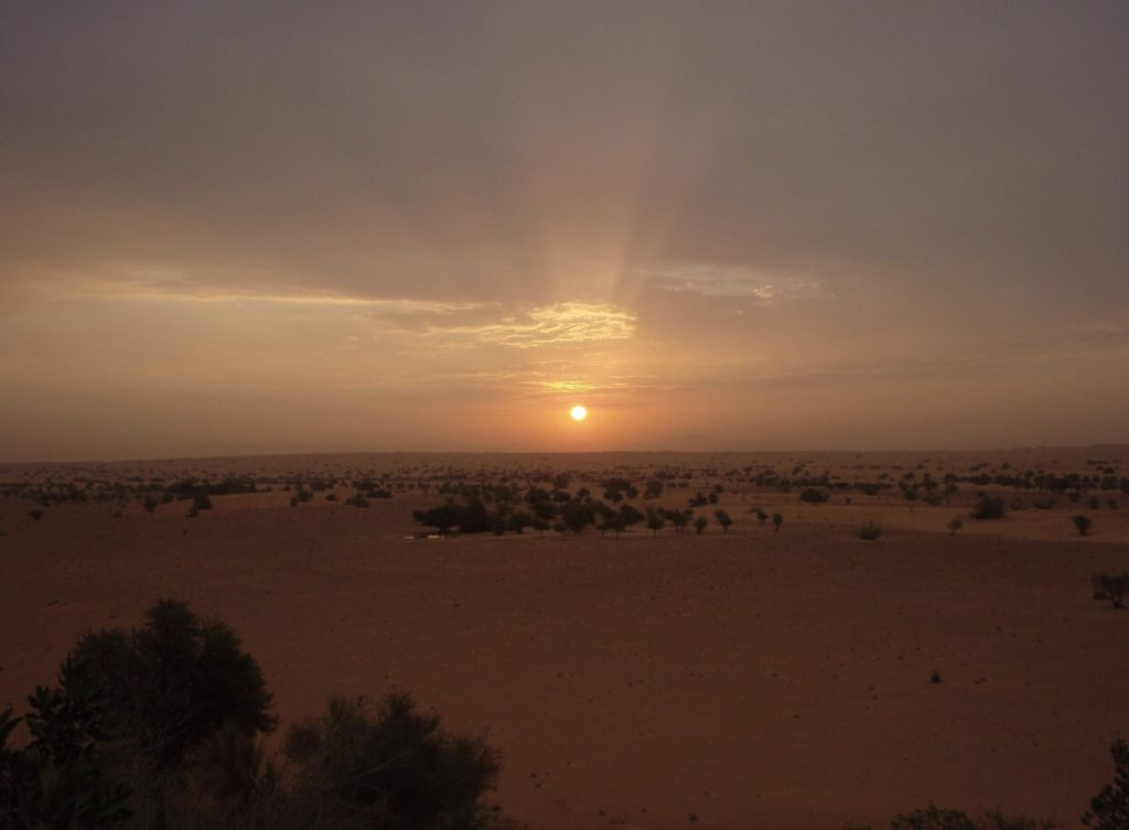 Sonnenuntergang im Al Maha